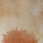 IMG_1517 - Kopi
